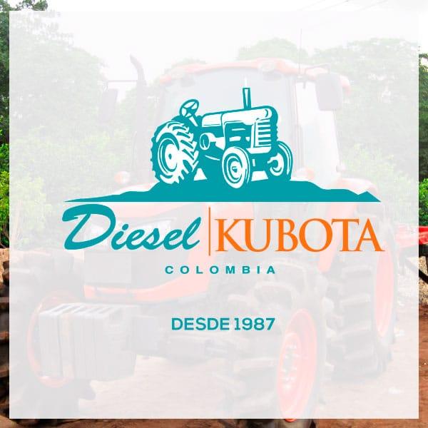 Repuestos y tractores Diesel Kubota